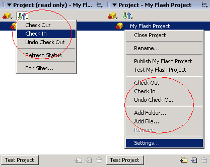 Use SourceSafe in Flash