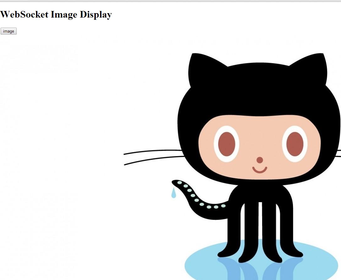 Java WebSocket Server for Image Transmission with Jetty