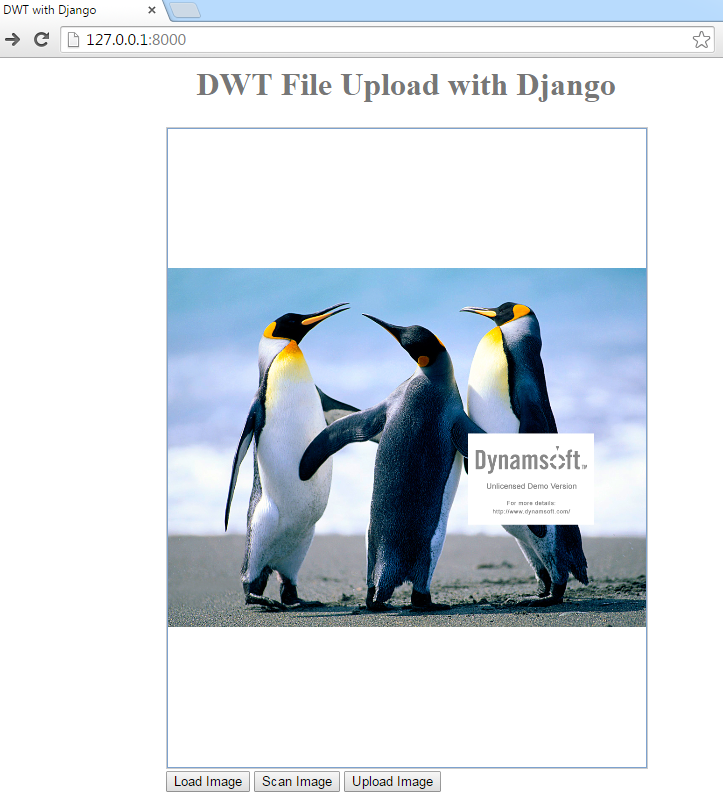 Django Upload Files