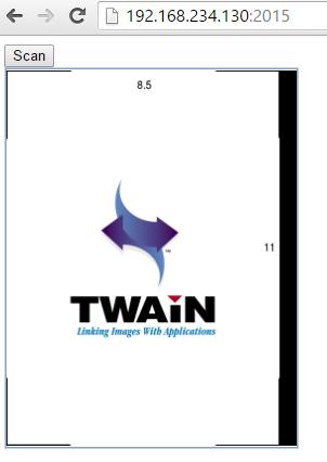web twain result