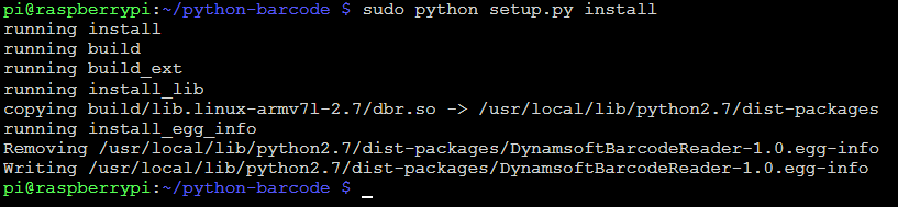Python custom extension install