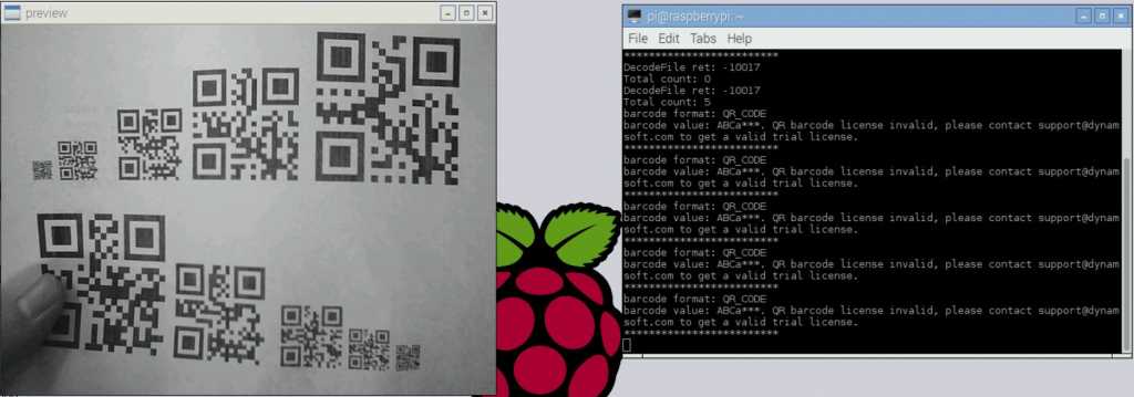 Raspberry Pi Barcode Scanner Result