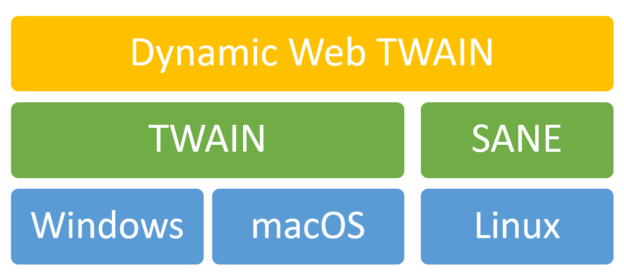Hierarchy of Dynamic Web TWAIN
