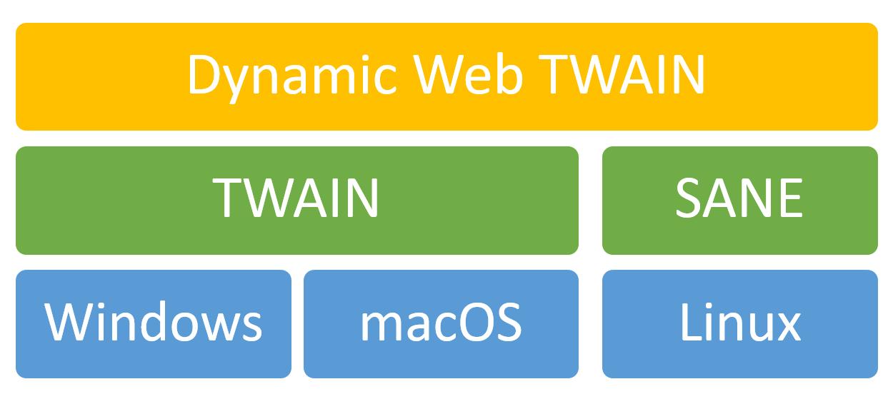 Hierarchy of Dynamic Web TWAIN