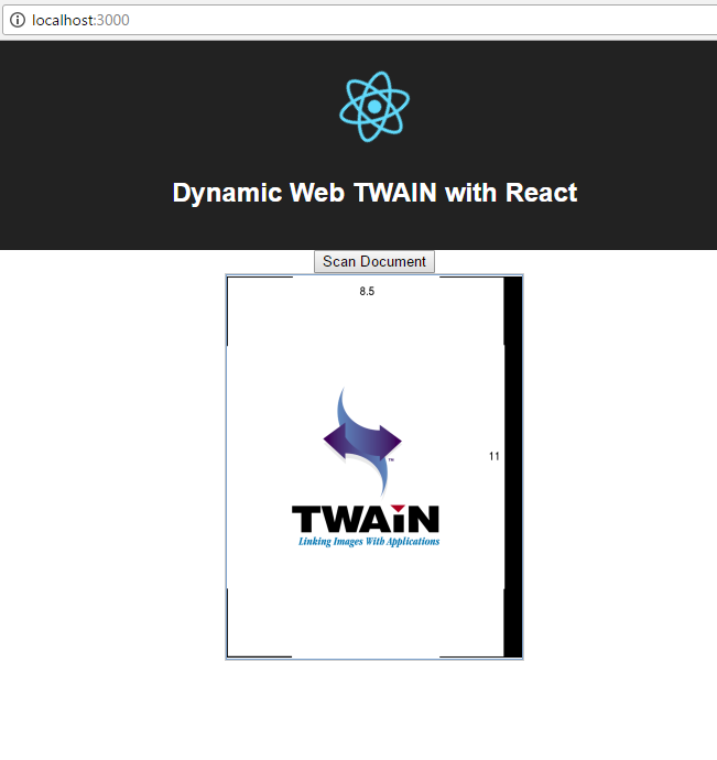 React web document scanning
