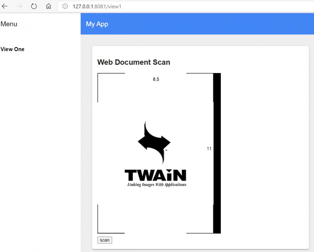 Polymer Shadow DOM document scan