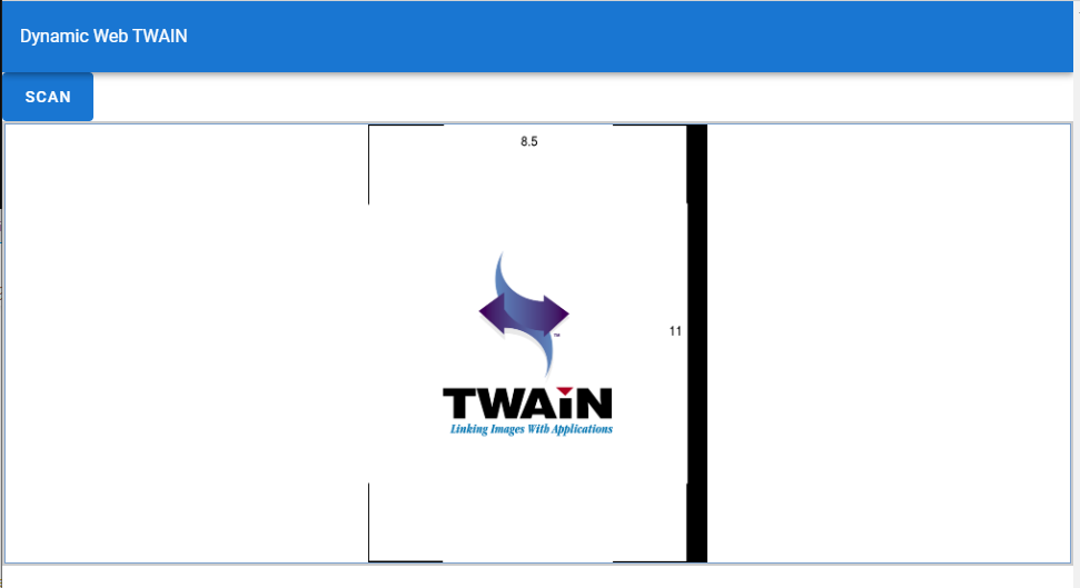 Functional WebTWAIN app:  result display